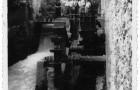 Ruota idraulica del Mulino Cocconi (s.d.)